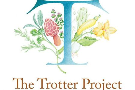 The Trotter Project Expands Scholarship Program for Promising Students