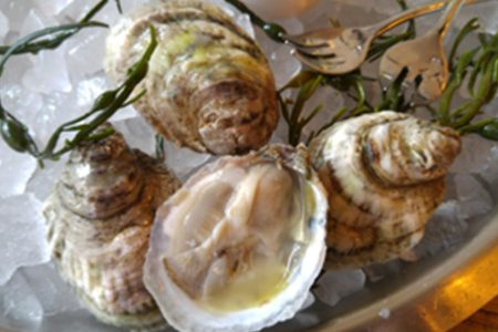 The Dearborn to Celebrate Galway International Oyster Fest