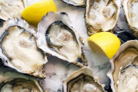 Tribes Beer Company Hosts Oyster Fest at Mokena