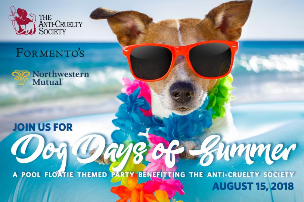 Dog Daysof Summer Graphic
