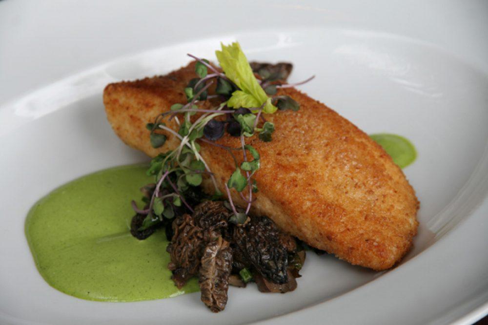 Parmesan Crusted Halibut. Photo credit: Cindy Kurman