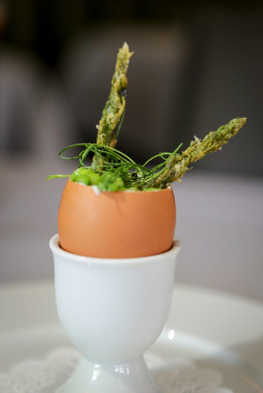 Blanchard Egg