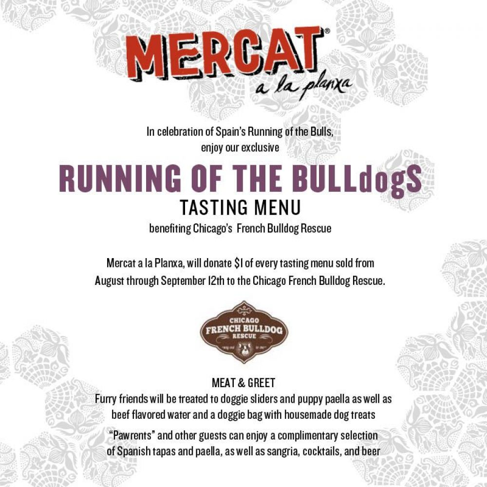 Mercat Meet and Greet